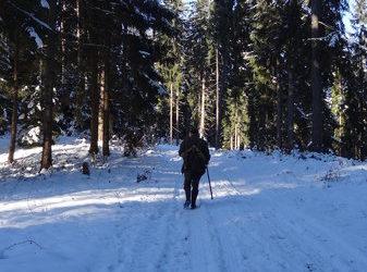 Iarna constiintei noastre Este iarna. Cu toate atributele ei: ninsoare, viscol, inghet. Populatia, scindata ca de obicei, filosofeaza intens subiectul deszapezirii: iesim singuri din nameti, macar pana-n poarta, sau asteptam […]