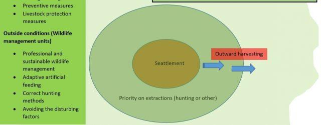 Când ne trezim și noi……??? sau Quo vadis, management al faunei sălbatice?   Cum va afecta criza de coronavirus ramura de management al faunei sălbatice? Ce avem de făcut […]
